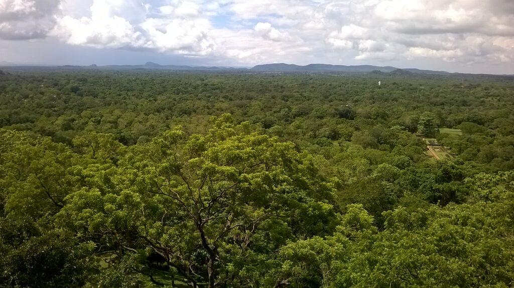 sigiriya srilanka